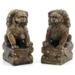 A Pair of Stone Temple Lions