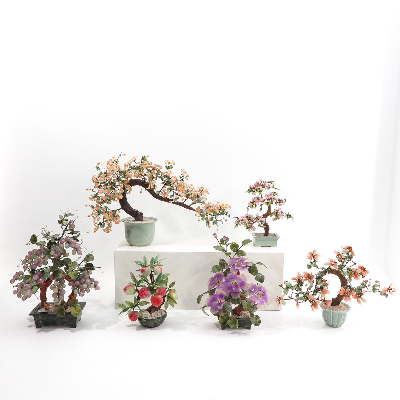 A Collection of Floral Arrangements
