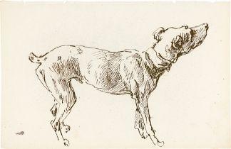 Johann Georg von Dillis. Der Hund Pertrix.