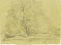 Johann Georg von Dillis. Baumgruppe im Englischen Garten. 1823