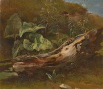 Deutsch, um 1830. Naturstudie mit Baumstamm und Pflanzen.