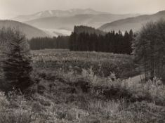 Albert Renger-Patzsch. Blick auf den Olsberg, Ruhrtal bei Nuttlar. 1957