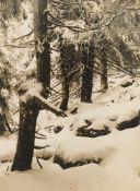 """Albert Renger-Patzsch. """"Erster Schnee am Brockenhang"""". Um 1925/26"""