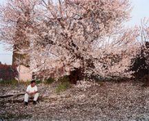 """Larry Sultan. Antioch Creek, aus der Serie """"Homeland"""", 2006–2009. 2008"""