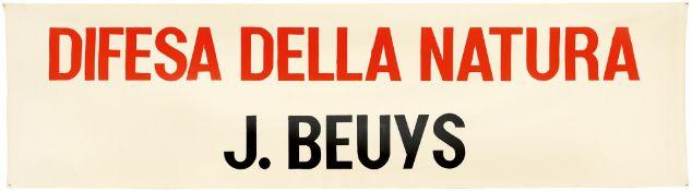 "Joseph Beuys. ""Difesa della Natura"". 1982"