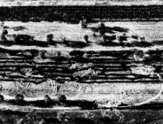 """Mario Giacomelli. From the series """"Storie di Terra"""". 1980s"""