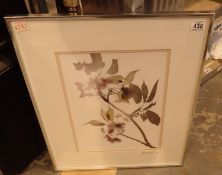 Framed and glazed floral print signed Steve Rogers 88, 30 x 40 cm. Not available for in-house P&P,