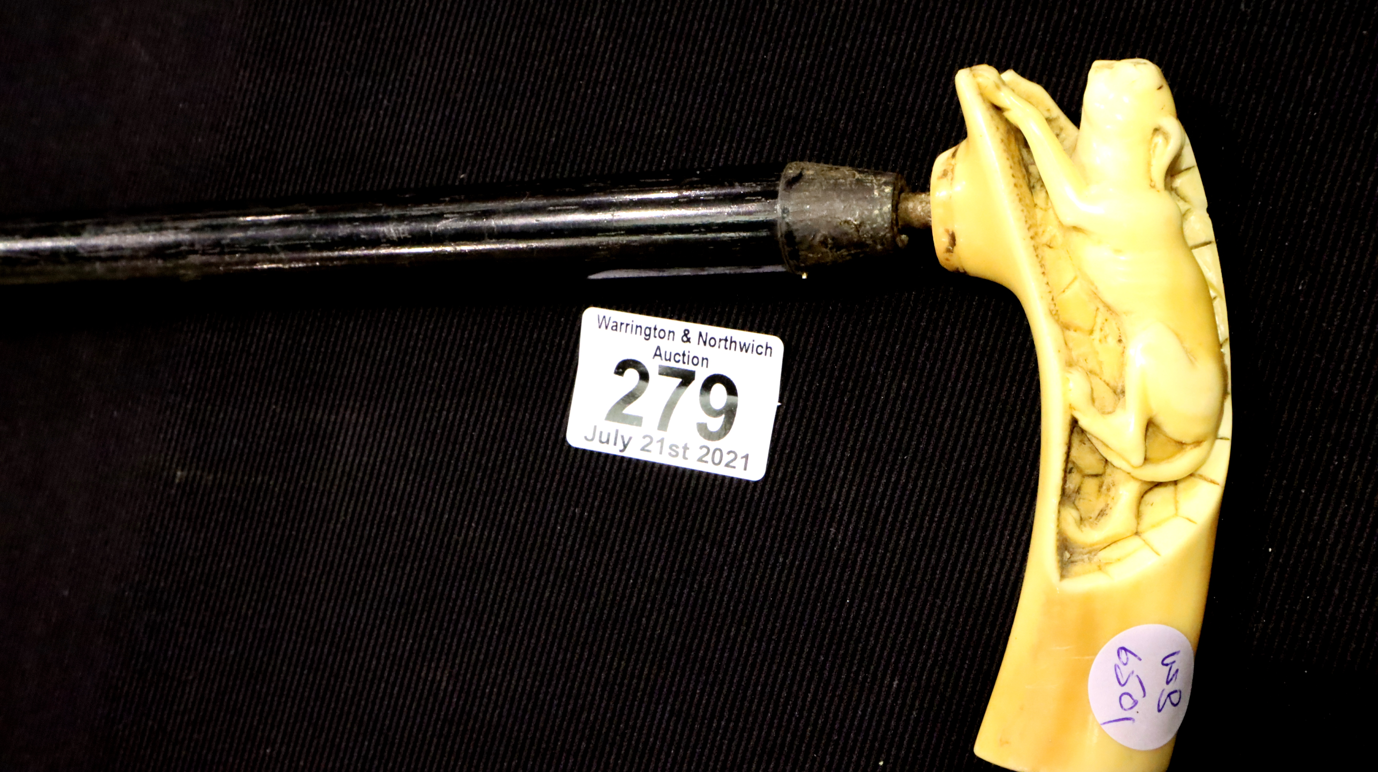 Bone handled walking stick, H: 88 cm. P&P Group 3 (£25+VAT for the first lot and £5+VAT for