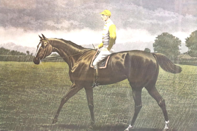 Sainfoin, McQueen's Derby Winner print, framed, 80 x 90 cm including frame. Not available for in-