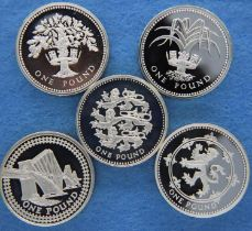 Five silver proof £1 Piedfort uncirculated coins, boxed with certificates. P&P Group 1 (£14+VAT