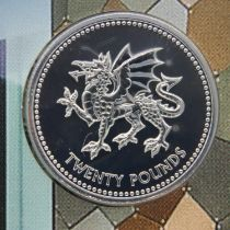 2017 Welsh Dragon uncirculated 999 fine silver £20. P&P Group 1 (£14+VAT for the first lot and £1+