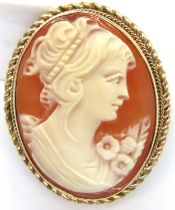 9ct gold bound cameo brooch, 30 x 23 mm, 6.9g Birmingham assay. P&P Group 1 (£14+VAT for the first