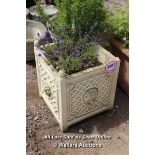 *STONE SQUARE PLANTER WITH RAMS HEAD COMPLETE WITH LAVENDER AND ROSEMARY BUSHES, 42.5CM X 42.5CM X