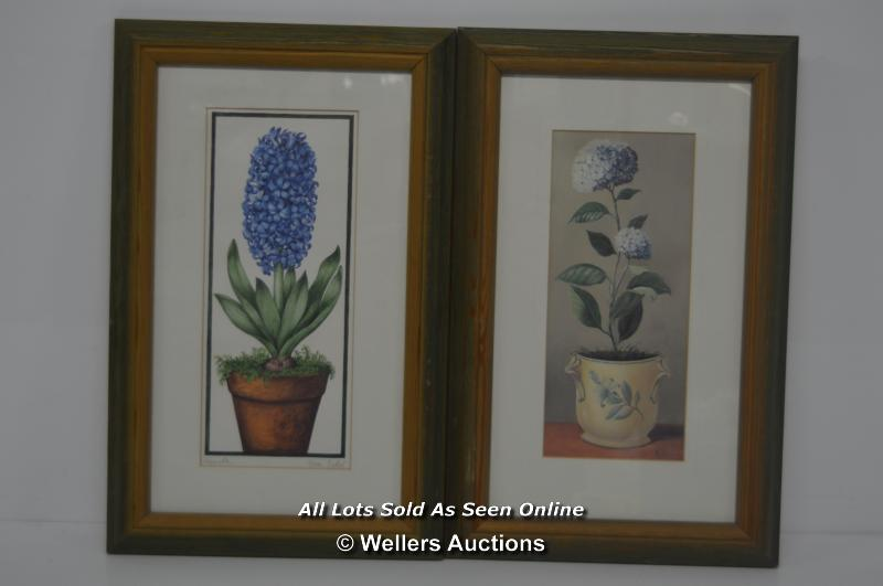 """PAIR OF MATCHING FRAMED PRINTS, 9.5""""X15"""", ONE OF HYACINTH BY FIONA BUTLER, ONE HYDRANGEA BY F"""