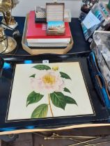 COLLECTION OF TABLE MATS, LAQUERED TRAYS