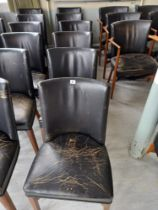 Six leather backed open chairs
