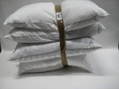 Five various makes of pillows, all unbagged
