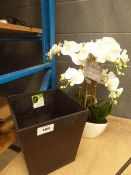 Artificial orchid and rubberised pot
