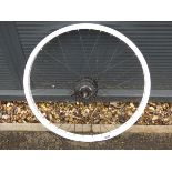 4029 Rear bicycle wheel