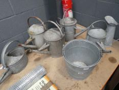 5 galvanised watering cans, 2 buckets and a galvanised jug