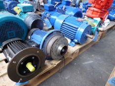 Four assorted motors, one unbranded; Lowara FCTE4 50-125/03; Brook Crompton D112, 4kw and Brook
