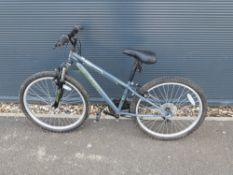 Grey Apollo childs mountain bike