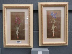 (1) Pair of botanical prints by Gloria Eriksen