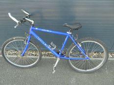 Blue Raleigh boys mountain bike