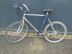 4037 - Carrera gold and blue mountain bike