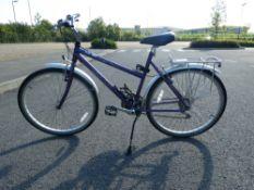 Purple Raleigh ladies bike