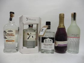 5 bottles of Gin,