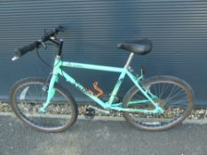 Green Raleigh childs bike
