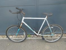Silver and green Raleigh mountain bike