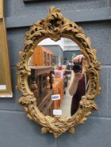 Mirror in ornate gilt frame