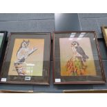 Pair of watercolours - Young Owls by Alan Fairbrass