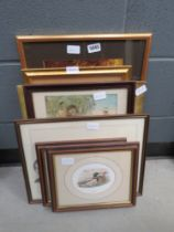 Quantity of prints inc. Ducks, The Family Pet, stags and a lion