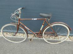 Raleigh bike in brown