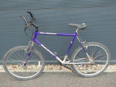 Raleigh mountain bike in purple
