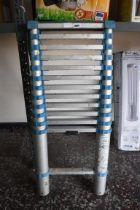 12 step extending ladder