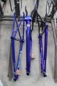 3 bright blue carbon fibre Figma bike frames sizes S and 2x XL