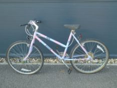 Pink and blue girls cycle