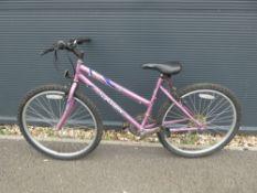 Sabre Genie punk girls mountain bike