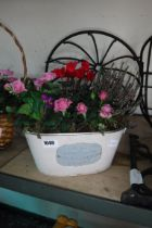 Trough containing mixed plants