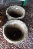 Pair of ivy leaf decoration concrete planters