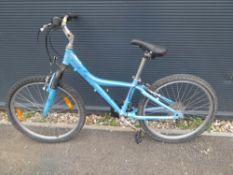 Blue childs mountain bike