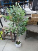 Artificial fig tree
