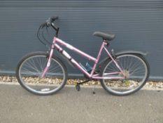 4037 Club Dunlop mountain bike in pink