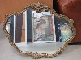 Mirror in decorative gilt frame