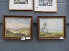 Two oil on boards by Peter Gladman