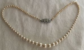 Vintage Lotus pearls necklace in box with pretty clasp